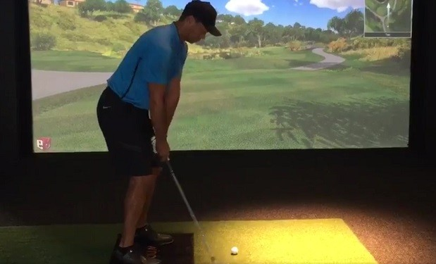 Tiger Woods Swing February 2016