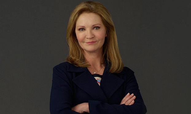 Joan Allen, The Family, ABC