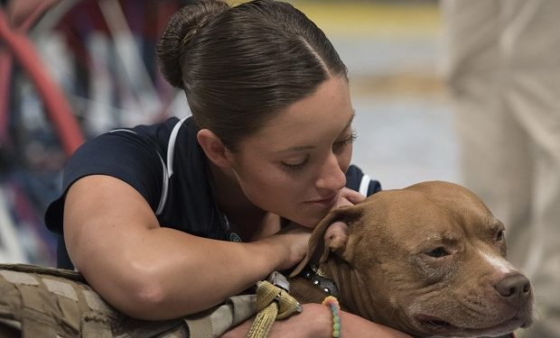 Army Sgt. Elizabeth Marks pets Bugsy, a military working dog, while U.S. wheelchair basketball team members celebrate their gold medal win at the 2016 Invictus Games in Orlando, Fla., May 12, 2016. DoD photo by Roger Wollenberg