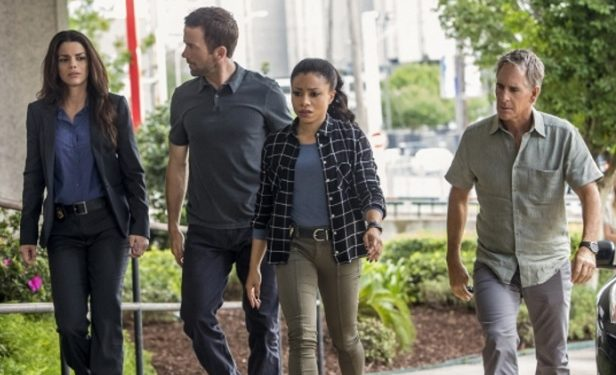 Vanessa Ferlito as FBI Agent Tammy Gregorio, Lucas Black as Special Agent Christopher Lasalle, Shalita Grant as Sonja Percy, and Scott Bakula as Special Agent Dwayne Pride
