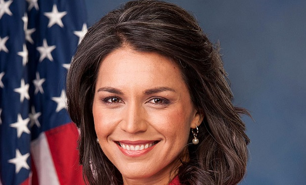 tulsi_gabbard_official_portrait_113th_congress