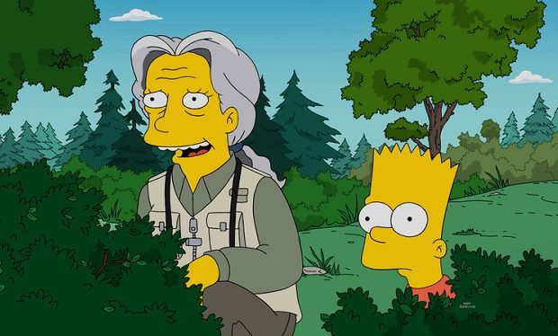 The Simpsons - Looking for Mr. Goodbart