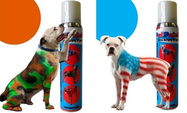 Pet Paint