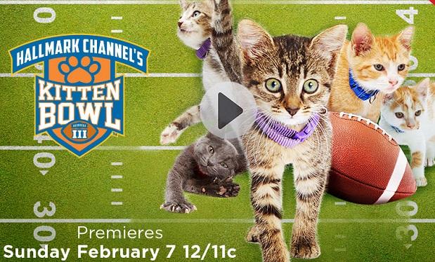 Hallmark Kitten Bowl
