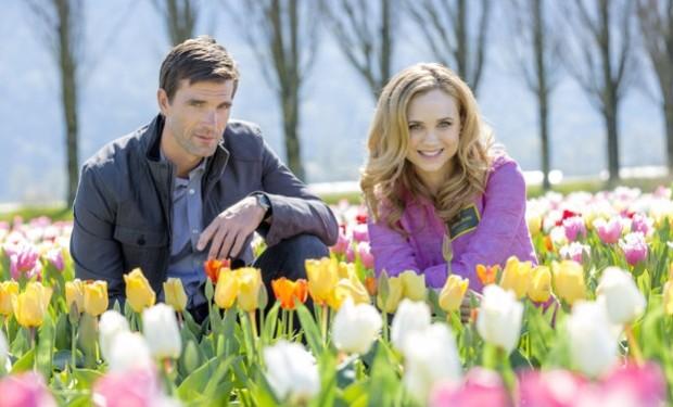 Tulips in spring Crown Media