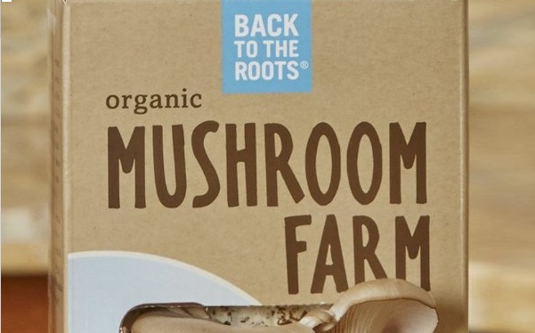 back to the roots organic Mushroom Farm Kit