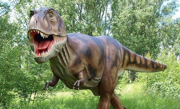 T-Rex_Modell