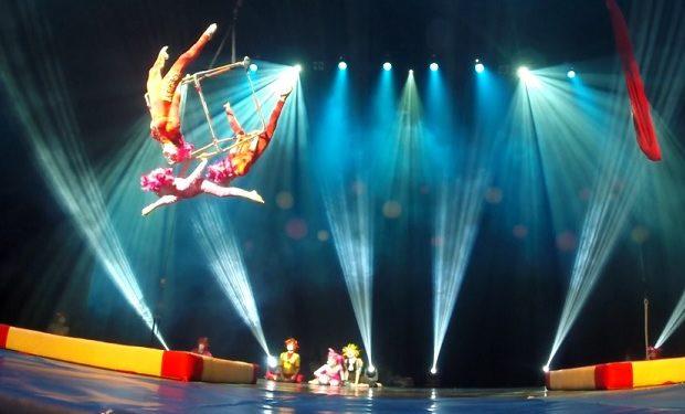 Le petite Cirque vimeo