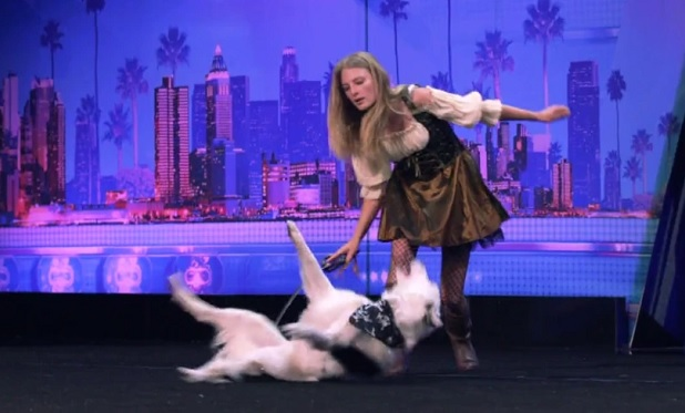 Hero the Super Collie AGT NBC