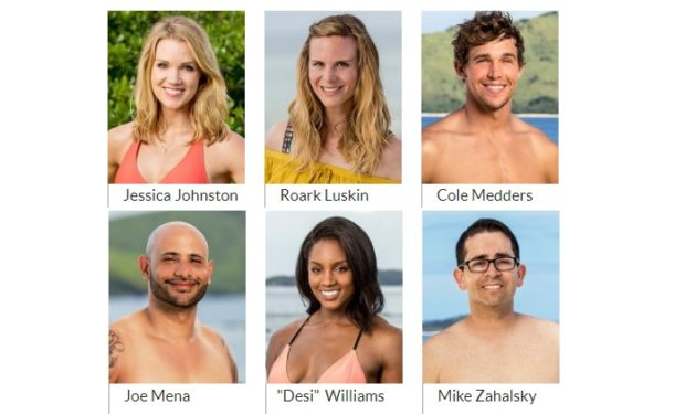 Healer on Survivor 35 CBS