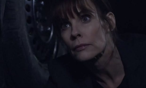 Alexandra Paul in Babynapped Lifetime