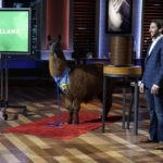 Guard Llama Shark Tank Michael Desmond ABC