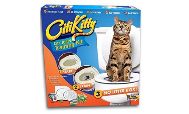 CitiKitty on Amazon BIG