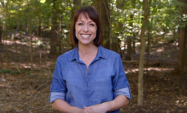 Paige Davis Trading Spaces TLC
