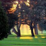 TPC Harding Park golf course SF