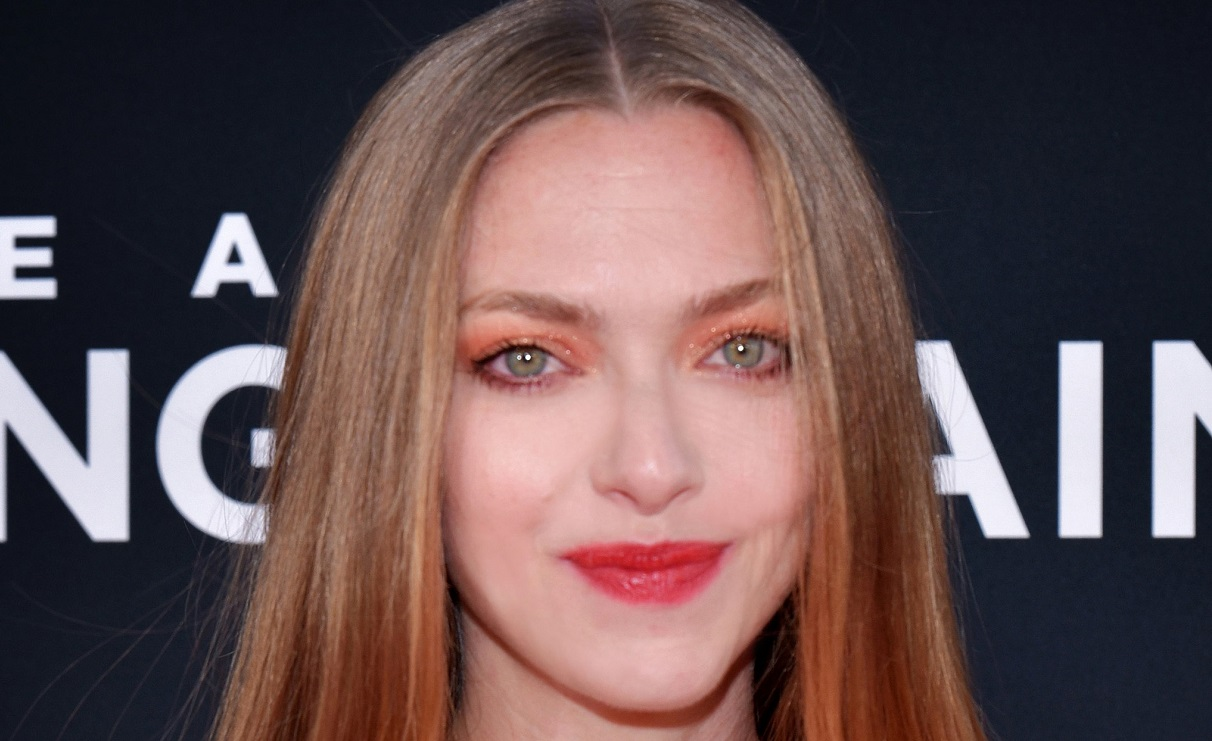 Who Is Amanda Seyfried's Husband Actor Thomas Sadoski? 'The Mimic'