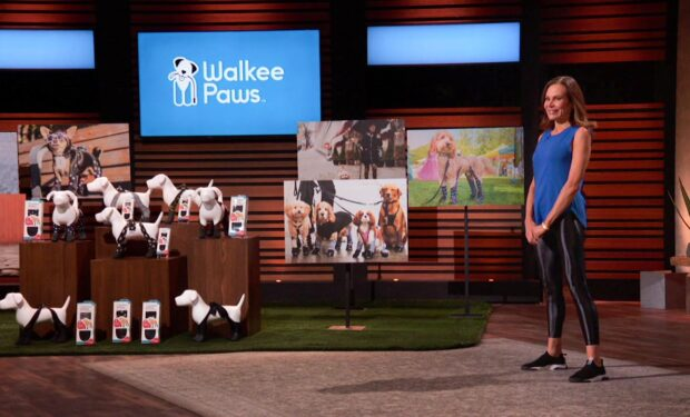 Walkee Paws Shark Tank
